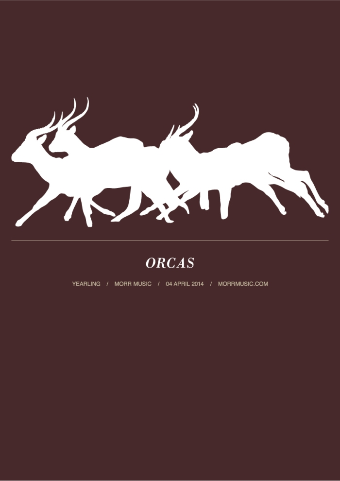 orcas_poster